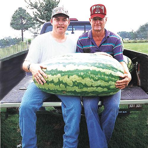 Carolina Cross #180 Watermelon